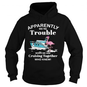 Flamingo apparently were trouble when we are cruising together who knew hoodie