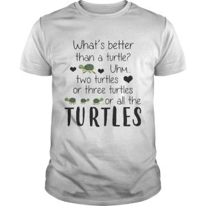 What's Better Than A Turtle Uhm Two Turtles Or Three Turtles Or All The Turtles shirt
