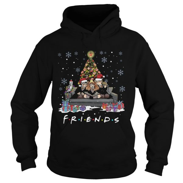 Friends Tv Show Harry Potter christmas tree  Hoodie